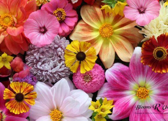 5 Reasons to Send Flowers